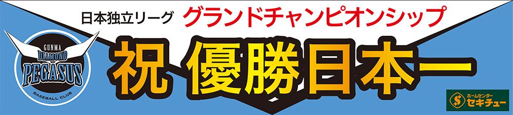 群馬ダイヤモンドペガサス 独立リーグ日本一!
