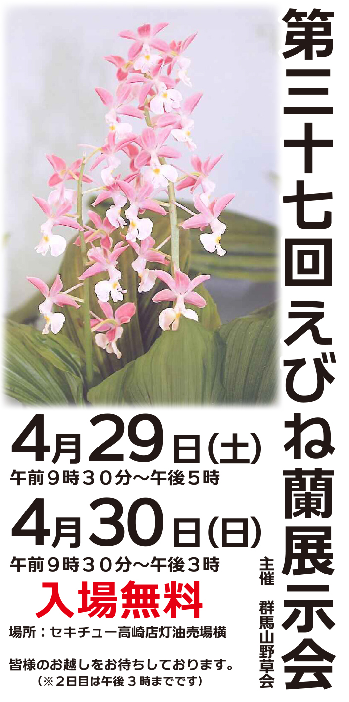 第37回えびね蘭展示会